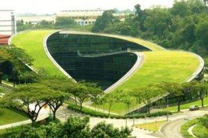 arquitectura organica - inspiracion volatil blog